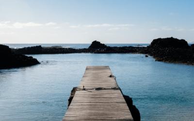 La Gestalt Thérapie dans le Journal des Psychologues